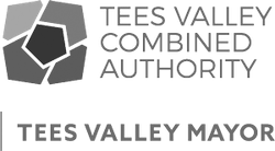Tees Valley Mayor Logo
