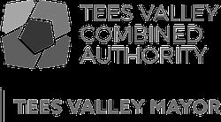 Tees Valley Mayor Logo